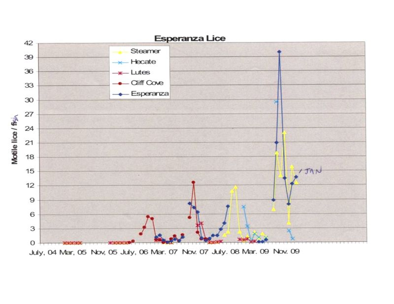 Esperanza sea lice data
