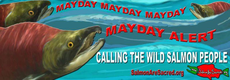 Mayday banner