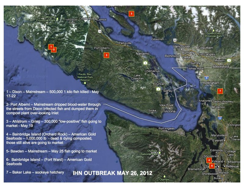 IHN OUTBREAK MAP copy
