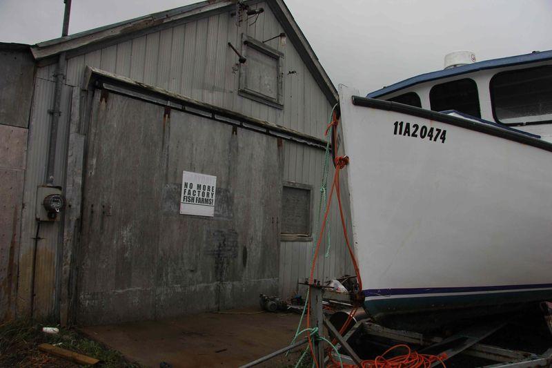 No more fish farms boat