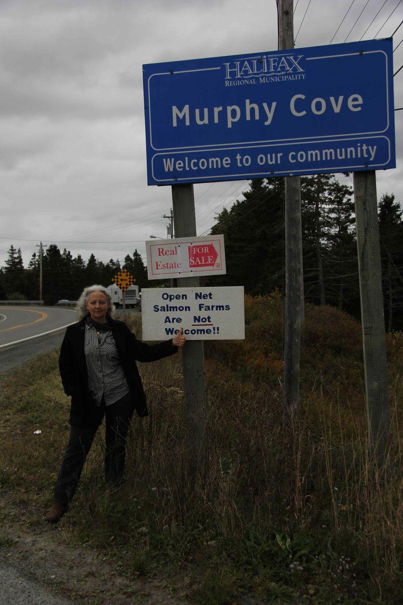 Murphy Cove