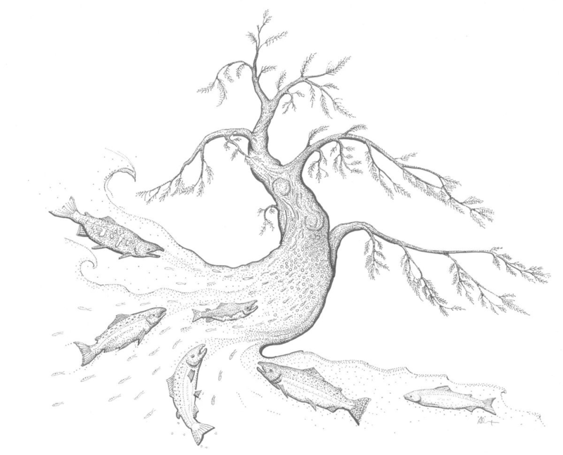 Fishtree pen & Ink