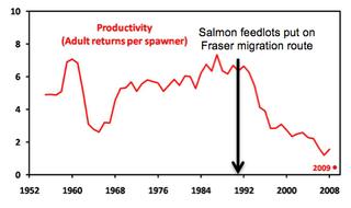 Sockeye decline graph