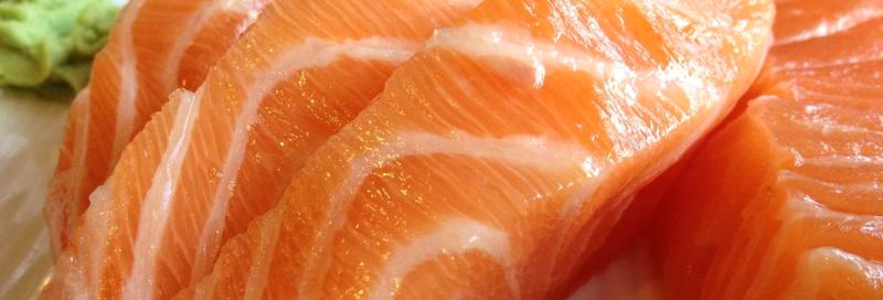 Fat sashimi