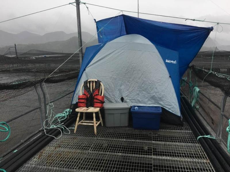 Camp P Elizabeth