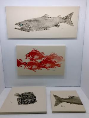 Art Shed display