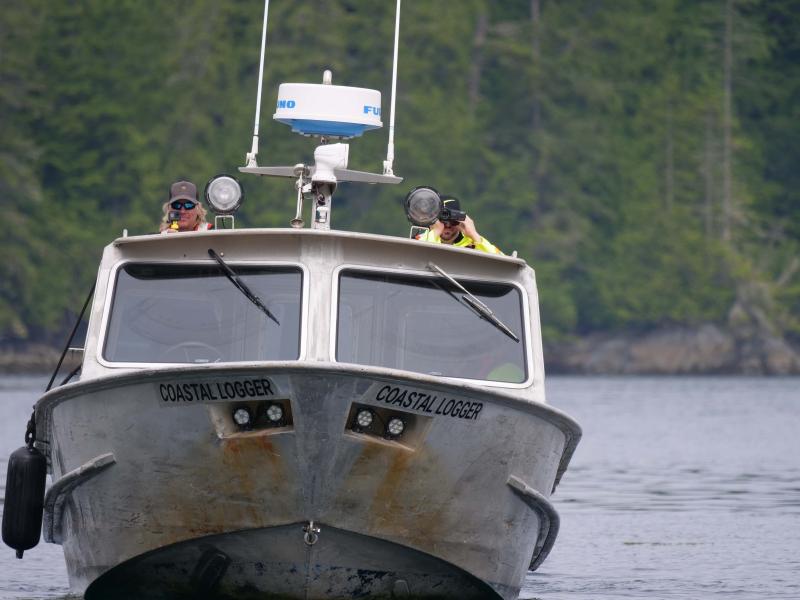 Coastal Logger filmers